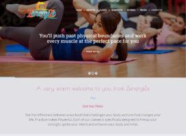 zenergize website