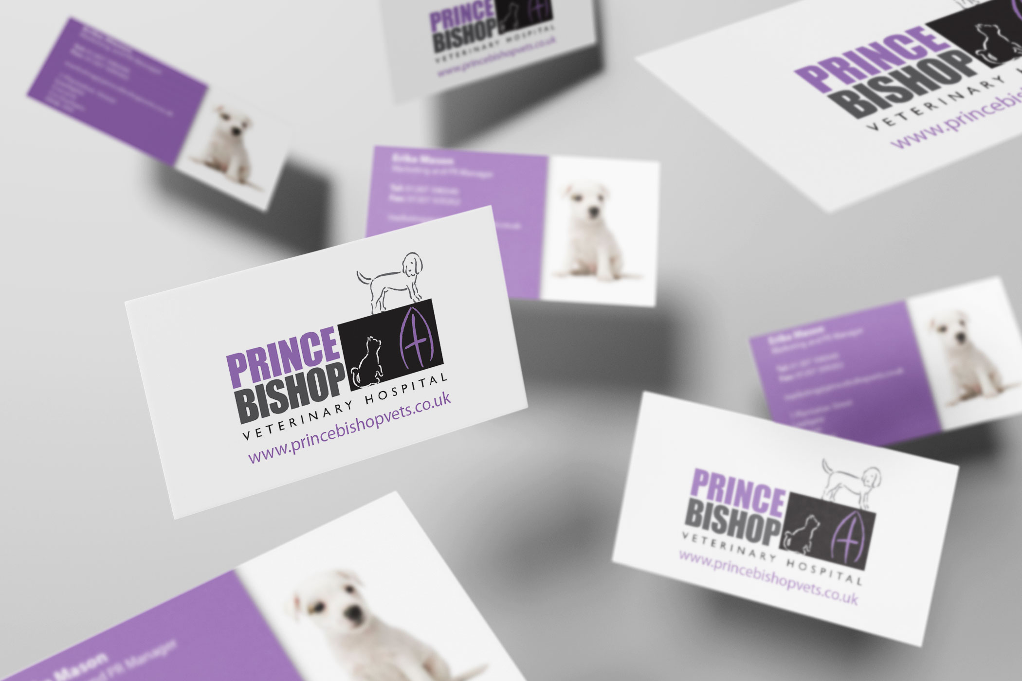 Prince Bishop Veterinary Hospital - Business Card Design and Print ...